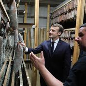 En Corse, la stratégie perdante d'Emmanuel Macron