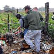 Des animaux sauvés d'une «ferme de l'horreur» près de Perpignan