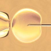Une femme infertile a mis au monde un bébé conçu à trois