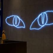 Le chat de Claude Lévêque hypnotise au nouveau UGC Cité Ciné à Vélizy