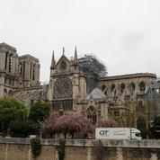 Notre-Dame: «Le génie d'une architecture sans architecte»