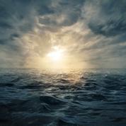 Plus de 200.000 virus différents identifiés dans les océans