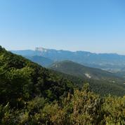Biodiversité: quelques hectares rendus à la vie sauvage dans la Drôme