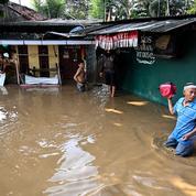 L'Indonésie va bientôt transférer sa capitale hors de Jakarta et de l'île de Java