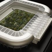 For Forest, une mini-forêt au cœur d'un stade autrichien en 2019
