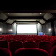 Le cinéma français doit faire sa mue en cinq ans pour survivre