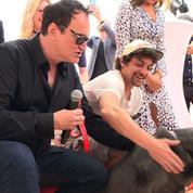 Brandy le pitbull reçoit une palme à Cannes pour sa prestation dans le dernier Tarantino
