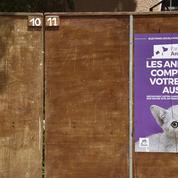 Européennes 2019: avec plus de 2%, le parti animaliste crée la surprise des «petites listes»