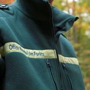L'Office national des forêts dans une passe difficile