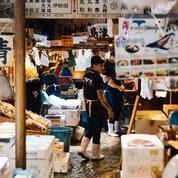 Kodawari Tsukiji, le goût du kitsch