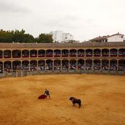 Jacques-Charles Fombonne: «La corrida n'est autorisée en France que depuis un peu plus d'un siècle»