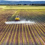 Plus d'un quart des pesticides utilisés aux États-Unis sont interdits dans l'UE