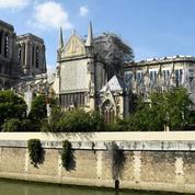 Philippe Delorme:«Ce que nous disent les pierres vives de Notre-Dame…»
