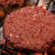 En 2040, 60% de la viande que nous mangerons sera artificielle ou végétale