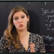 Bac 2019: découvrez les corrigés de l'épreuve de français en vidéo