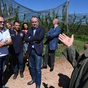 Orages: le ministre de l'Agriculture promet des aides pour les sinistrés