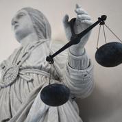Sylvie Horning condamnée à 20 ans de prison pour quintuple infanticide
