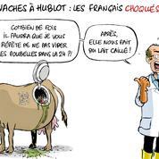 Le dessin d'Ixène: les Français choqués par les vaches Hublot