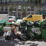 Comment les professionnels du recyclage veulent simplifier le tri des déchets