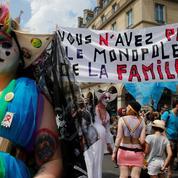 PMA pour toutes: la Marche des Fiertés mobilise contre une loi «a minima»