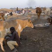 En Afrique, priorité aux jeunes ruraux