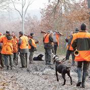 Les nouvelles règles entre chasseurs et écologistes