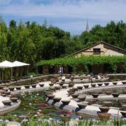 Les nymphéas du Temple-sur-Lot, la collection qui a inspiré Monet