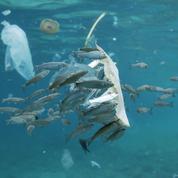 Méditerranée, la mer la plus polluée d'Europe