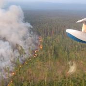 Feux de forêt en Sibérie: un impact environnemental préoccupant