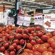 Comment les fruits et légumes français font face à la concurrence étrangère