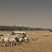 En Mauritanie, les caravaniers du fer