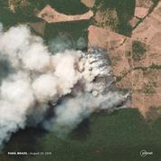 L'Amazonie, «poumon de la planète» en détresse