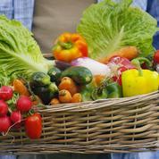 Fruits et légumes bio: la grande distribution impose-t-elle vraiment des surmarges?