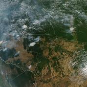 En anglais, Google confond les incendies en Amazonie et les liseuses d'Amazon