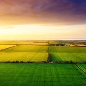 Agriculture: un flou juridique jette le trouble sur l'utilisation de certaines semences