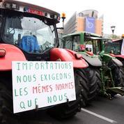 Mercosur, Ceta: «La politique commerciale souffre d'un profond déficit démocratique»