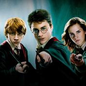 Abandon des filières S, ES et L: un lycée donne des noms de classes Harry Potter