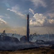 Incendies de forêt: la situation s'aggrave-t-elle vraiment au Brésil et dans le monde?