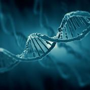 Quand l'ADN nous raconte les migrations européennes