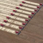 Pourquoi la France est-elle si dépendante du soja brésilien?