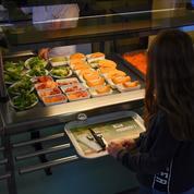 Le menu végétarien s'impose dans les cantines