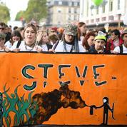 Des «gilets jaunes» s'invitent à la 21e Techno Parade dédiée à Steve Maia Caniço
