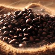 Café: le nouvel or noir ? ou les dessous d'un business juteux