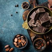 Cacao: «il n'est plus possible de consommer avec des œillères»