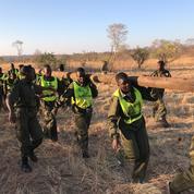 Au Zimbabwe, la conservation de la nature s'écrit au féminin