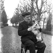 Zola dans Le Figaro en 1896: «Pourquoi la souffrance d'une bête me bouleverse ainsi?»