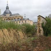 À Versailles, la lente agonie du Potager du roi