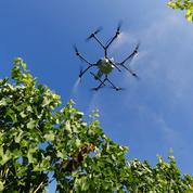 Agriculture biologique: bientôt des tests de pulvérisation de pesticides par drone