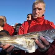 Pêche: l'Union européenne veut sauver le cabillaud