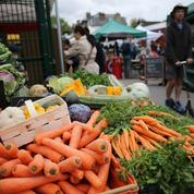 Des idées toutes simples pour réduire le gaspillage alimentaire
